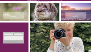 van Helden fotografie, hondenfotograaf, natuurfotograaf in Stein